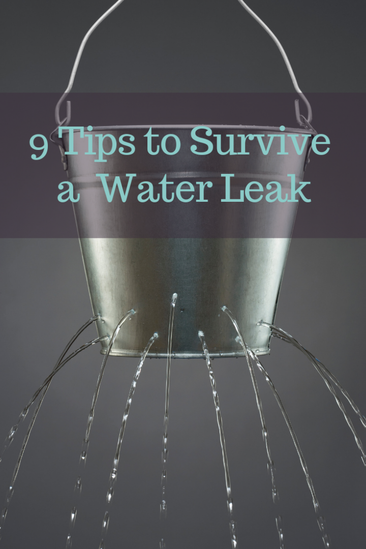 9 Tips to Survive a Water Leak in Your Home